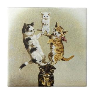 Humor lindo, el jugar de los gatitos de los gatos teja cerámica