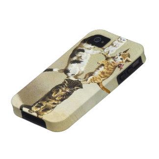 Humor lindo, el jugar de los gatitos de los gatos iPhone 4/4S carcasas