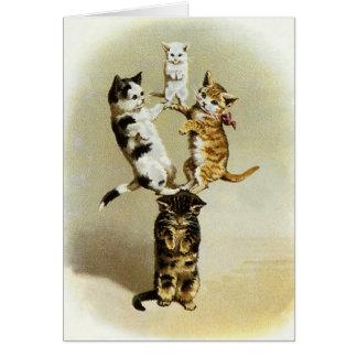 Humor lindo, el jugar de los gatitos de los gatos tarjetón
