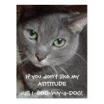 Humor ruso de la actitud del gato del gris azul postal