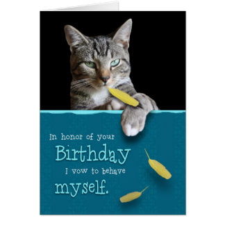 Humorous Birthday Card with Naughty Cat