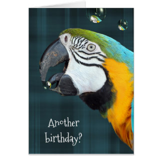humorous birthday-parrot with bubbles card