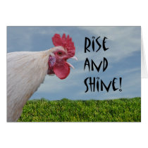 Humorous Chicken Rise and Shine Happy Birthday Card