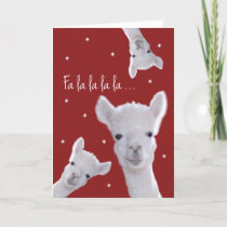 Humorous Christmas Carol Card, Llamas & Snowflakes Holiday Card