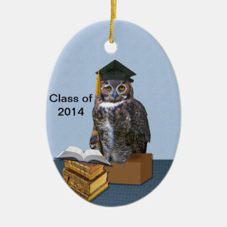 Humorous Class of 2014 Graduation Owl Christmas Ornaments