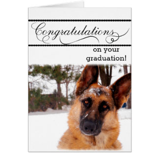 Humorous Graduation Card with German Shepherd