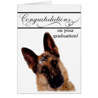 Humorous Graduation Card with German Shepherd