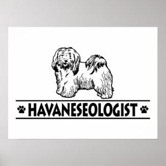 Humorous Havanese Poster