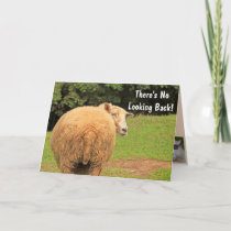 Humorous Sheep Advice Birthday Card