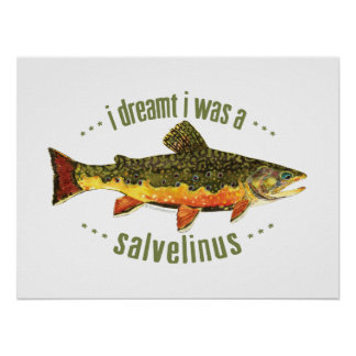 Humorous Trout Fishing Poster