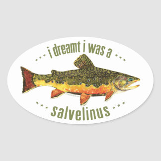 Humorous Trout Fishing Oval Sticker