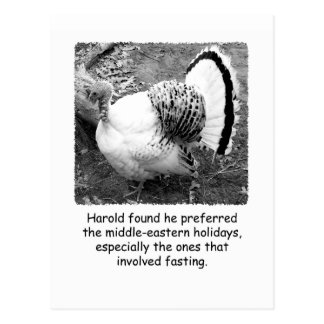 Humorous Turkey Thanksgiving Post Card