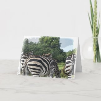 Humorous Zebra Behind Get Well Card
