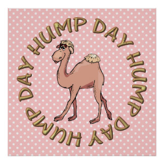 Hump Day Camel Art Poster