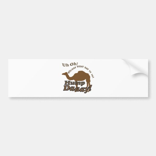 Hump Day Camel! Car Bumper Sticker