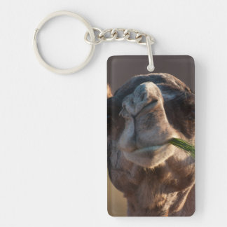 Hump Day Camel Feasting on Green Grass Keychain