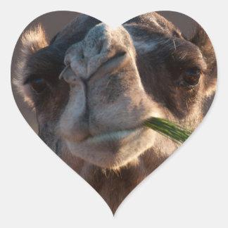Hump Day Camel Feasting on Green Grass Heart Sticker