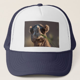 Hump Day Camel Feasting on Green Grass Trucker Hat