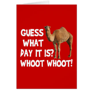 Hump Day Camel Guess What Day It Is Card