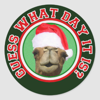 Hump Day Camel Guess What Day It Is Christmas Classic Round Sticker