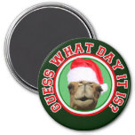 Hump Day Camel Guess What Day It Is Christmas Magnets