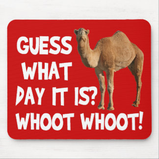Hump Day Camel Guess What Day It Is Mouse Pad