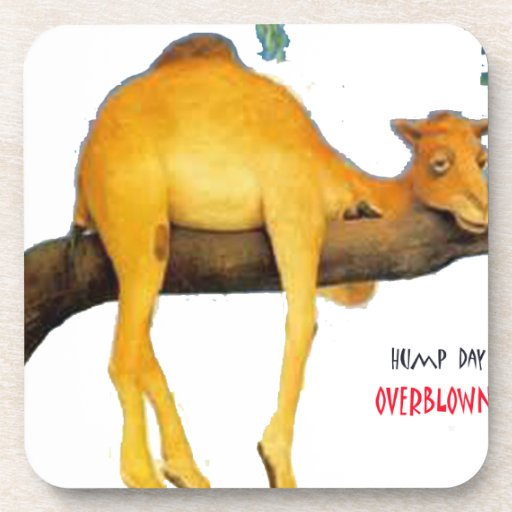 Hump Day Camel .. Overblown Drink Coaster