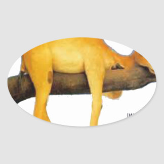 Hump Day Camel .. Overblown Oval Sticker