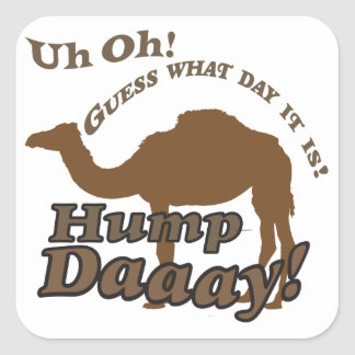 Hump Day Camel! Square Sticker
