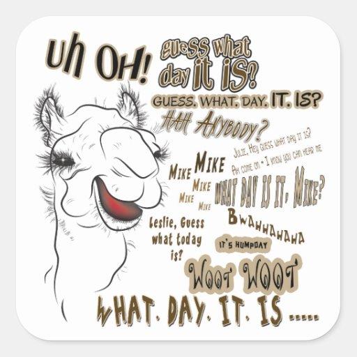 Hump Day Camel Cartoon