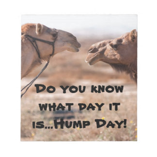 Hump Day Camels Notepad