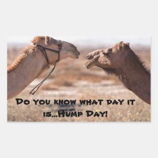 Hump Day Camels Rectangular Sticker