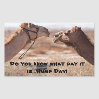 Hump Day Camels Sticker