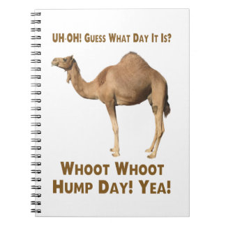 Hump Day Notebook