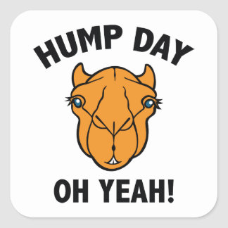 Hump Day Oh Yeah! Square Sticker