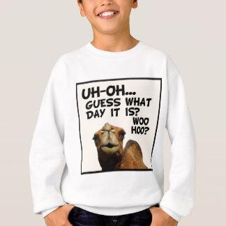 Hump Day Sweatshirt