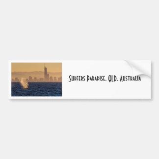Humpack Whales Surfers Paradise Queensland Bumper Sticker