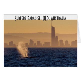 Humpack Whales Surfers Paradise Queensland Card
