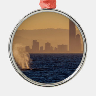 Humpack Whales Surfers Paradise Queensland Metal Ornament