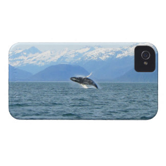 Humpback Acrobat iPhone 4 Case