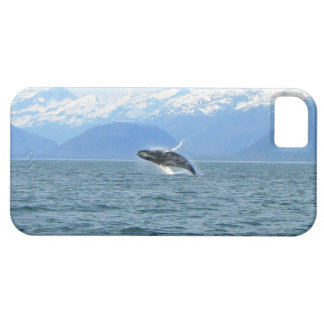Humpback Acrobat iPhone SE/5/5s Case