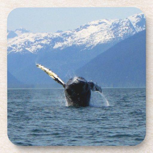 Humpback Barrel Roll Coaster