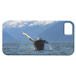 Humpback Barrel Roll iPhone SE/5/5s Case