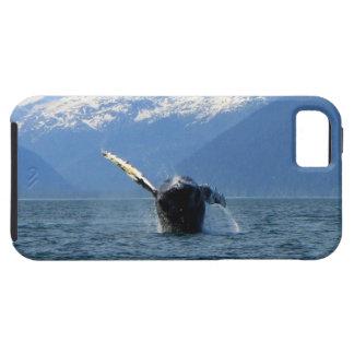 Humpback Barrel Roll iPhone SE/5/5s Case
