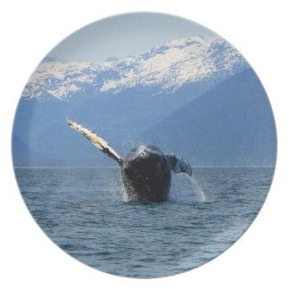Humpback Barrel Roll Melamine Plate