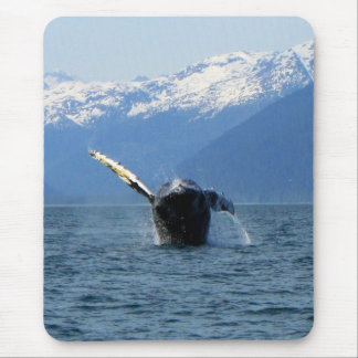 Humpback Barrel Roll Mouse Pad