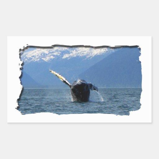 Humpback Barrel Roll Rectangular Sticker