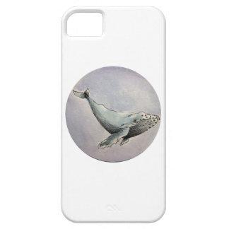 Humpback Funda Para iPhone SE/5/5s