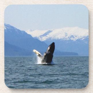Humpback on the Surface Beverage Coaster