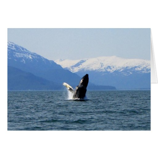 Humpback on the Surface Greeting Card